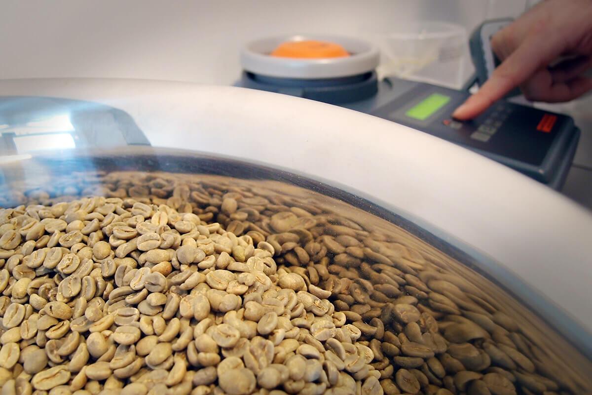 Careful analysis of green coffee beans
